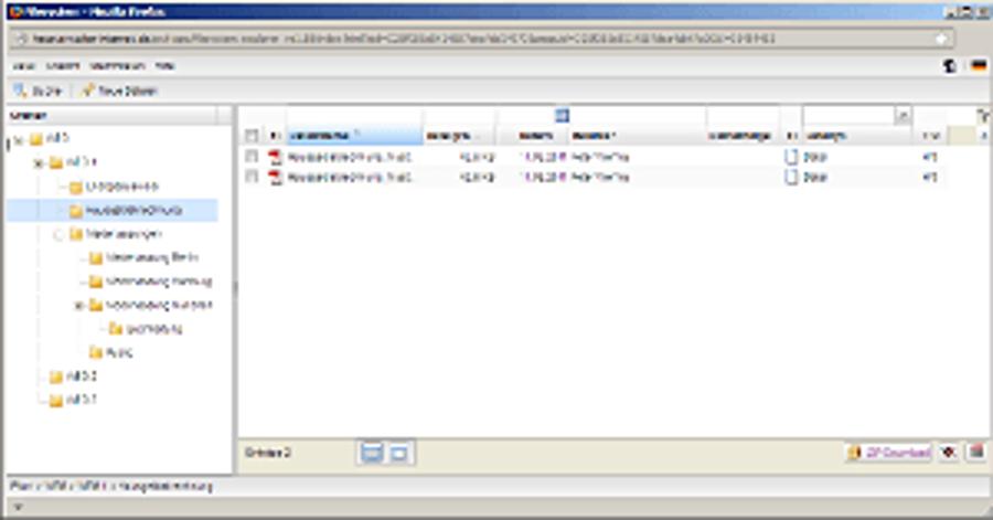 Filesystem jetzt mit Spiegelung