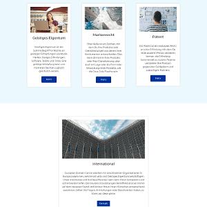 Die Website des European Domain Centre sieht auf den ersten Blick professionell aus.